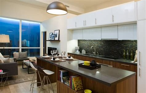 Combined Kitchen And Living Room by