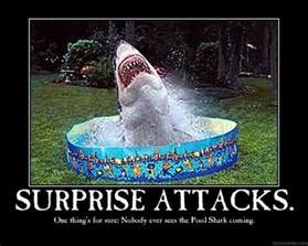 Backyard Monsters Not On Facebook Funny Quotes About Swimming Pools Quotesgram