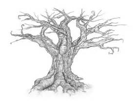 dead tree sketch drawing sketch coloring page