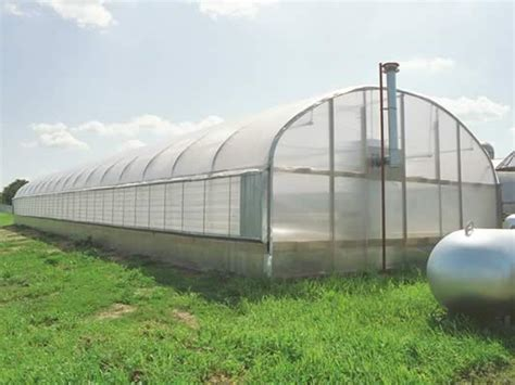 sle business plan greenhouse expansion mansion greenhouse kits sale gothic arch