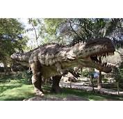 Indroda Dinosaur And Fossil Park Gandhi Nagar Ahmedabad