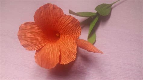How To Make Flowers Out Of Crepe Paper - how to make mandevilla paper flowers flower of