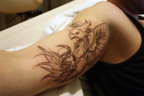 griffin tattoos griffin tattoos designs ideas and meaning tattoos for you