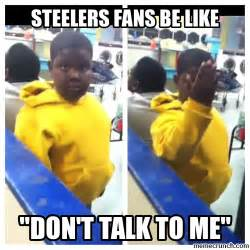 Steelers Fans Memes - steelers fans be like