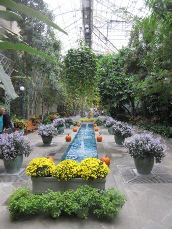 Botanical Gardens Dc Hours United States Botanic Garden Washington Dc Top Tips Before You Go With Photos Updated 2017