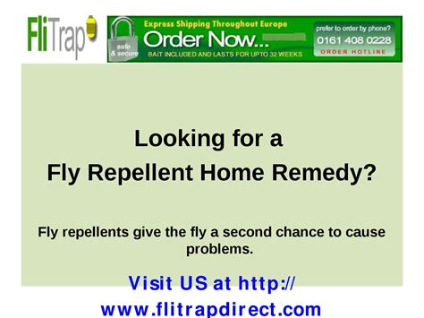 fly repellent home remedy by matthew issuu