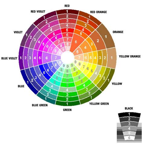 color wheel opposites color wheel decorate with colors on opposite sides