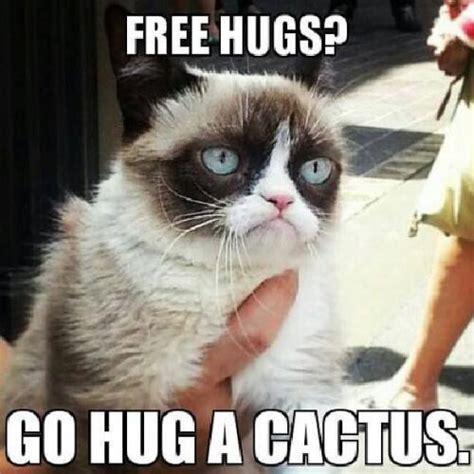 Meme Hug - grumpy cat hug