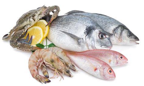 lebih banyak ikan di laut atau bintang di langit kisah alasan mengapa makanan laut bisa menyebabkan alergi