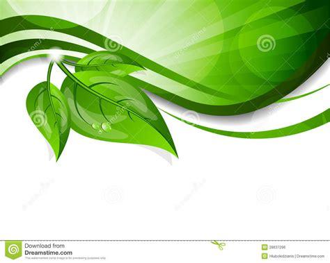 imagenes hojas verdes fondo con las hojas verdes ilustraci 243 n del vector