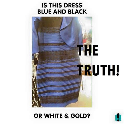 the dress is blue and black says the girl who saw it in black and blue dress www pixshark com images galleries