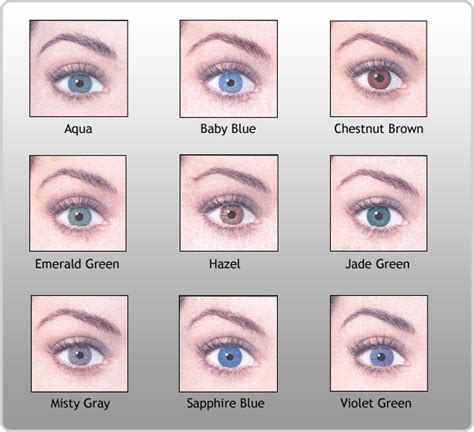 eye color chart pictures of eye colors eye color chart my favorite