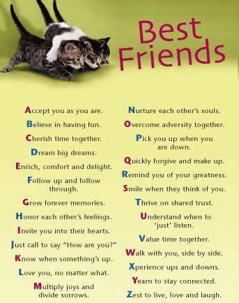 for best friend best friend quotes quotesgram