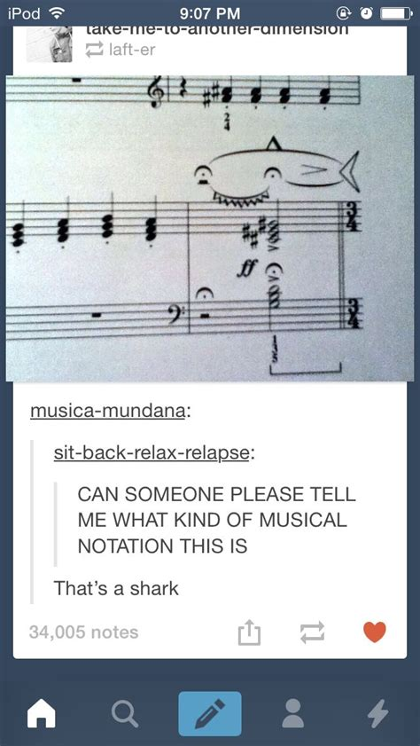 themes tumblr humor hahahahagahah there s a musical note that s called a shark