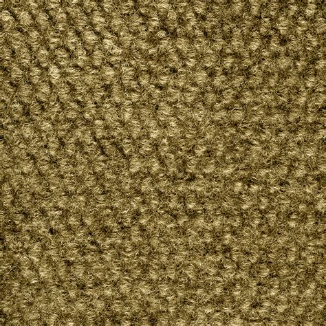 shop select elements preserve carpet by foss beige