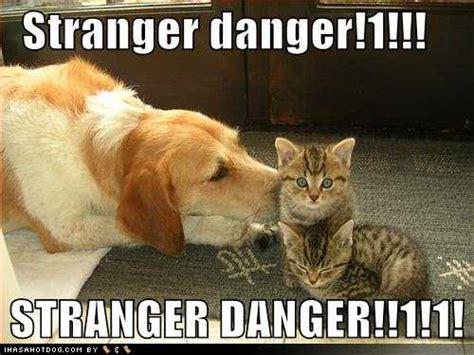 Stranger Danger Meme - ceptionillionares things disney taught me