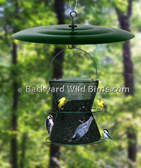 1000 ideas about squirrel proof bird feeders on pinterest