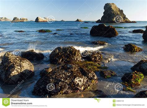 rocky oregon coast low tide stock images image 34802144