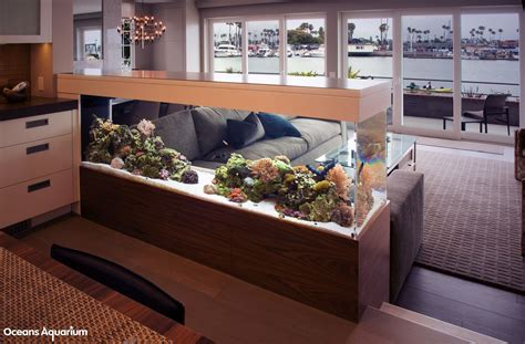 living room aquarium 200 gallon living reef custom aquarium room divider