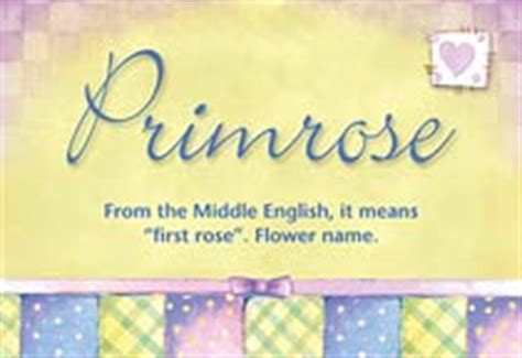 primrose name meaning primrose name origin name primrose meaning of the name primrose baby