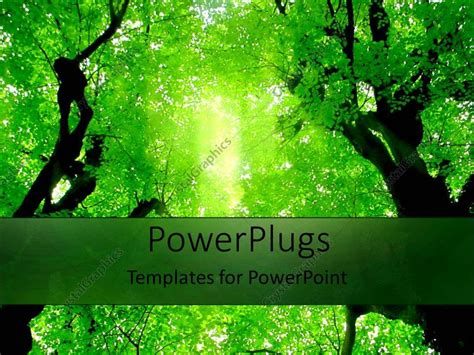 powerpoint templates free download forest powerpoint template green trees above in forest green