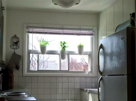 Hanging Herbs In Kitchen Window by Kitchen Garden Window Herb Pots For The Kitchen Hanging