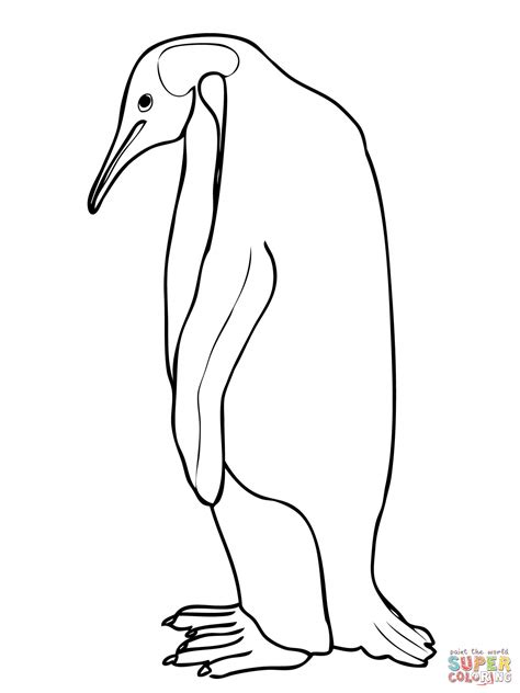 emperor penguin coloring page free printable coloring pages