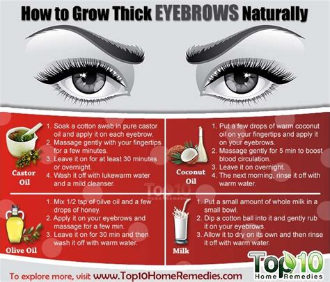 how long before brows grow back with coconut oil how to grow thick eyebrows naturally page 3 of 3 top