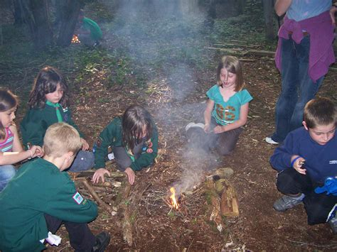 new year activities for cubs cubs wear a green sweatshirt and try lots of different