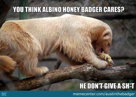Honeybadger Meme - image 718314 honey badger know your meme