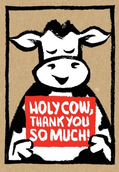 thanks so much for the permission holy cow thank you so much thank you cards boxed set