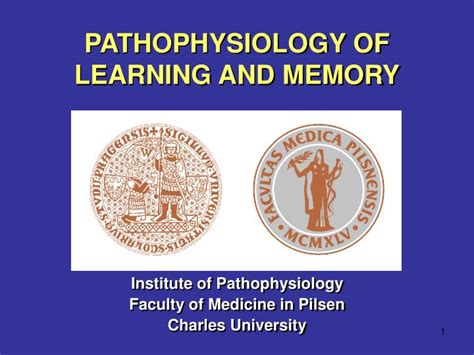 Ppt Pathophysiology Of Learning And Memory Powerpoint Presentation Id 2990525 Memory Ppt