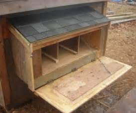 Backyard Chickens Nest Box Size Pictures Of Chicken Nesting Boxes How To Build A Nest