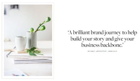 brand brilliance elevate your 0956454542 book report the buzz blog diane james home