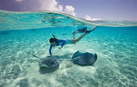 catamaran snorkeling in the bahamas experience the bahamas in nassau bluegreen vacations