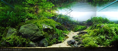 Aquascape Inspiration aquascape avec un aquarium osaka 320