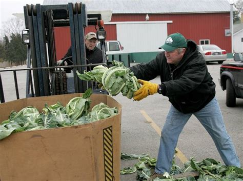Dupage Township Food Pantry by Downers Grove Seeking New Director To Continue