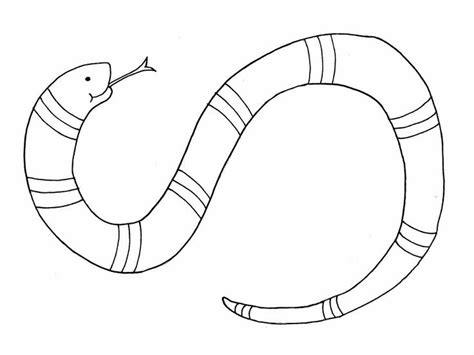 gopher snake coloring page 112 best images about coloring sheets on pinterest