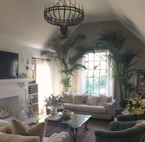 louisiana home decor shay mitchell home decor and living rooms on pinterest