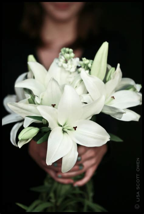white lilies the mark lso   THE MARK WEDDING