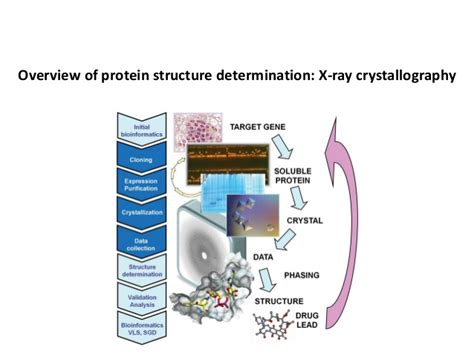 protein x crystallography bt631 12 x ray crystallography protein crystallization