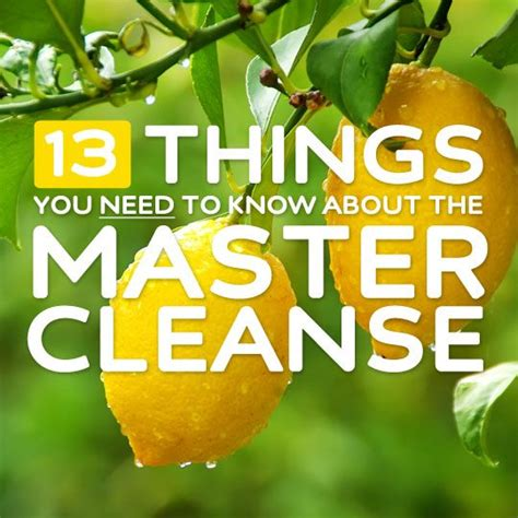Things To Bring To Detox by 13 Things You Need To About The Master Cleanse Bembu
