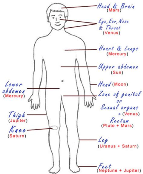 Outline Of The Human Parts by Drawing Planets As Humans Pics About Space