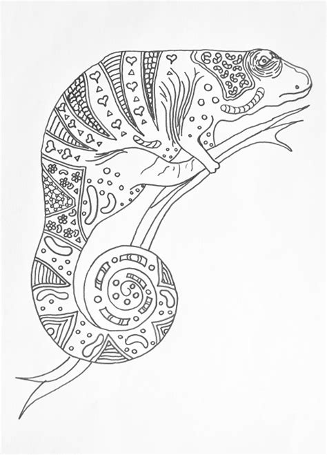 coloring pages for adults chameleon charming chameleon coloring book page favecrafts
