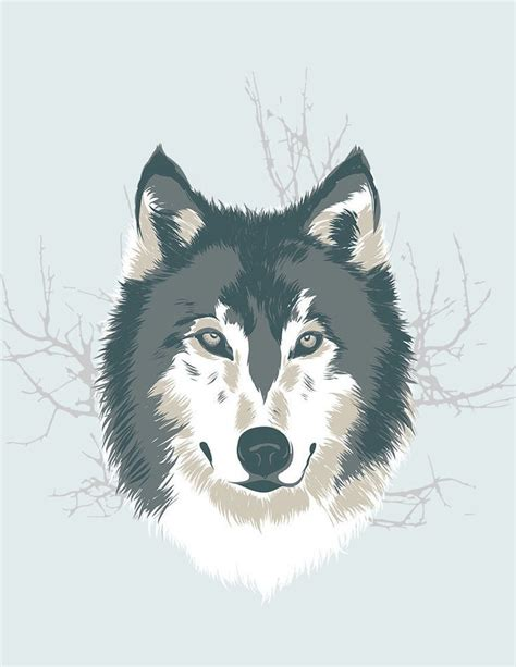 illustrator tutorial wolf best 20 wolf illustration ideas on pinterest red riding