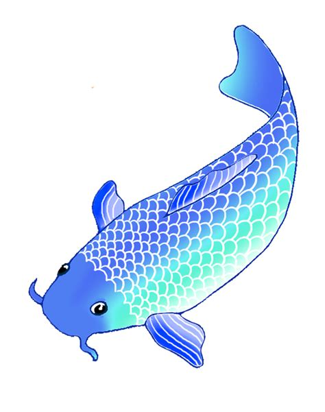 blue koi fish colorful koi fish drawings