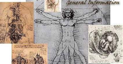 Fisiologi Kebidanan anatomi dan fisiologiilmu kebidanan