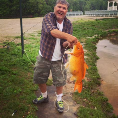 Stelan Gold Fish Kid here are 15 disturbing results of what happens to pet goldfish when they get dumped in lakes