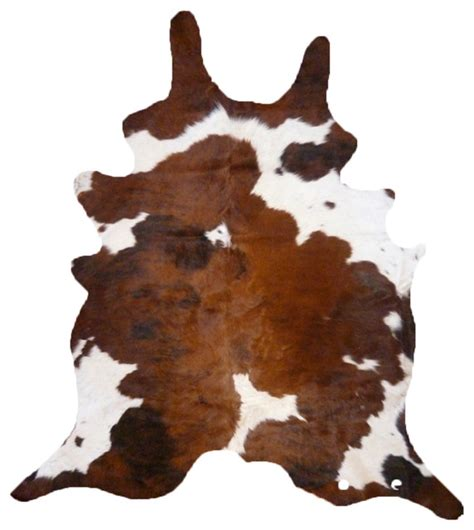 Brown And White Cow Rug Cowhide Brown And White Rug Modern Rugs By