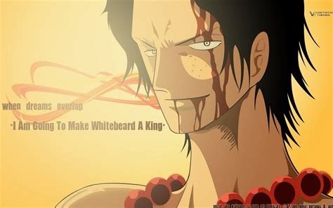 quotes dalam film one piece one piece funny quotes quotesgram